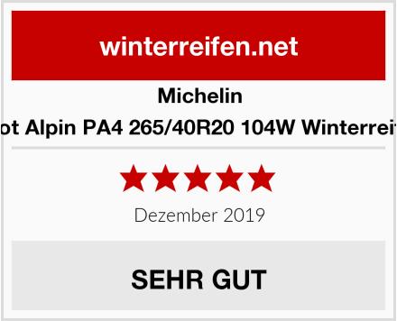 Michelin Pilot Alpin PA4 265/40R20 104W Winterreifen Test