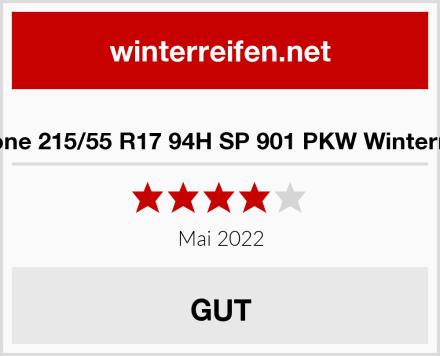 Austone 215/55 R17 94H SP 901 PKW Winterreifen Test