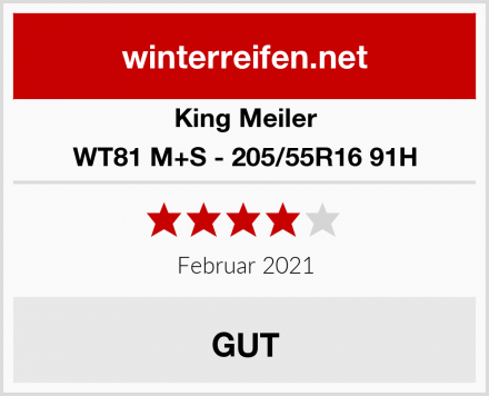 King Meiler WT81 M+S - 205/55R16 91H Test