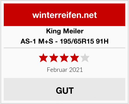 King Meiler AS-1 M+S - 195/65R15 91H Test