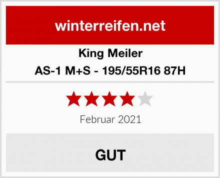 King Meiler AS-1 M+S - 195/55R16 87H Test
