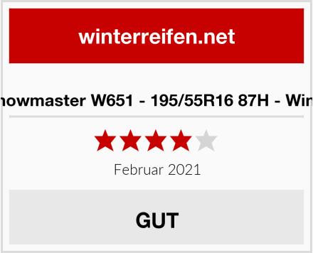 Petlas Snowmaster W651 - 195/55R16 87H - Winterreifen Test